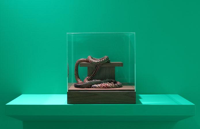 Deadline installation M snake
